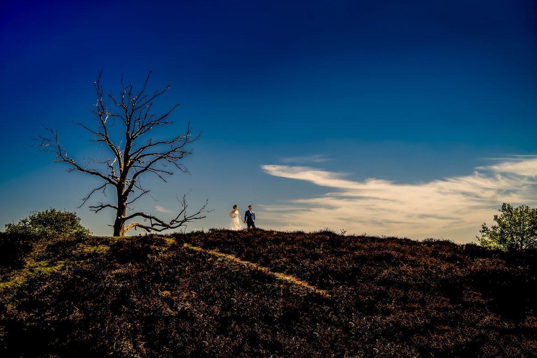 Veluwezoom Hoge Veluwe Trouwreportage Bruidsfotografie Arno de Bruijn fotograaf bruiloft